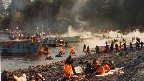 poluare exxon