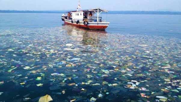 plastic in oceane curiozităţi înfricoşătoare