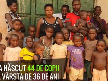 44 de copii