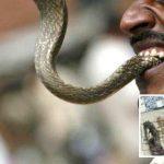 bărbat muşcat de şarpe